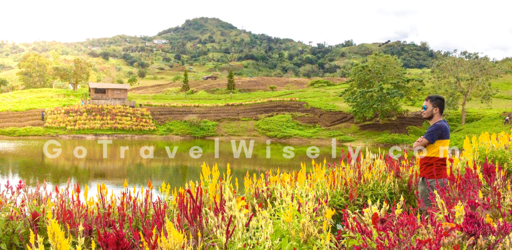 TIEZA Botanical Garden: Cebu's Flower Garden by the Lake | Go Travel Wisely