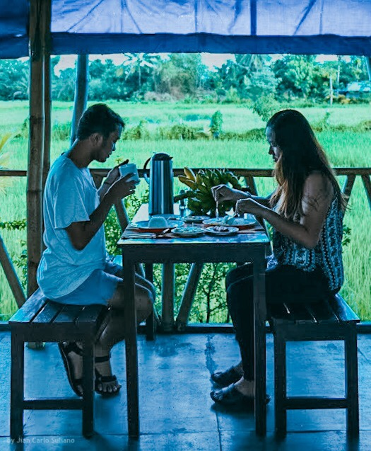 Breakfast by the rice field | Go Travel Wisely