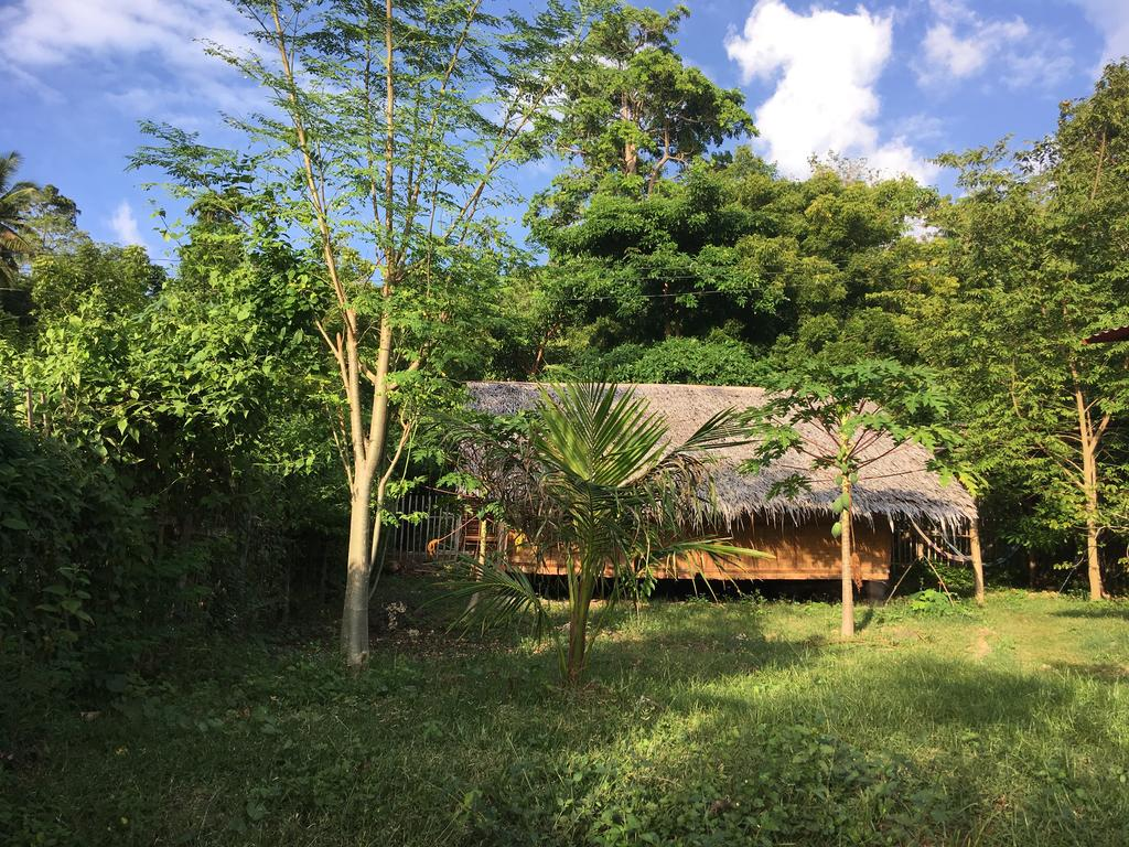 Best hostel in Siquijor with a mini-farm - Little Nomads Eco-guesthouse, Siquijor